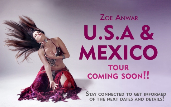cartel-tour-mexico-usa